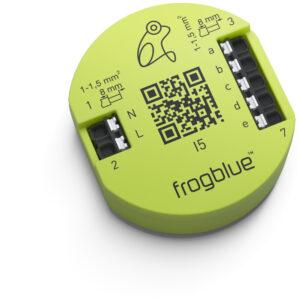 frogblue-frogIn5_Hauptbild